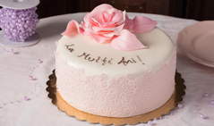 tort-special-img
